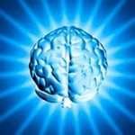 """""""Sólo usamos un diez por ciento del cerebro"""": ¿Mito o realidad?"""