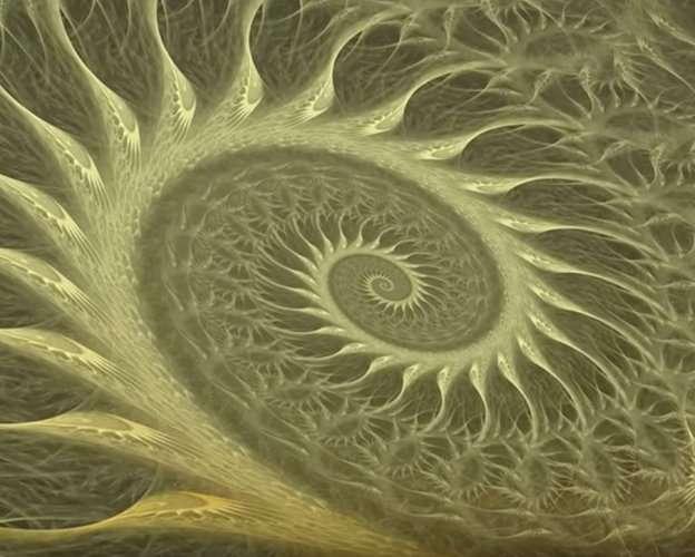 VIDEO: Mundos internos, Mundos externos (2ª parte). La espiral
